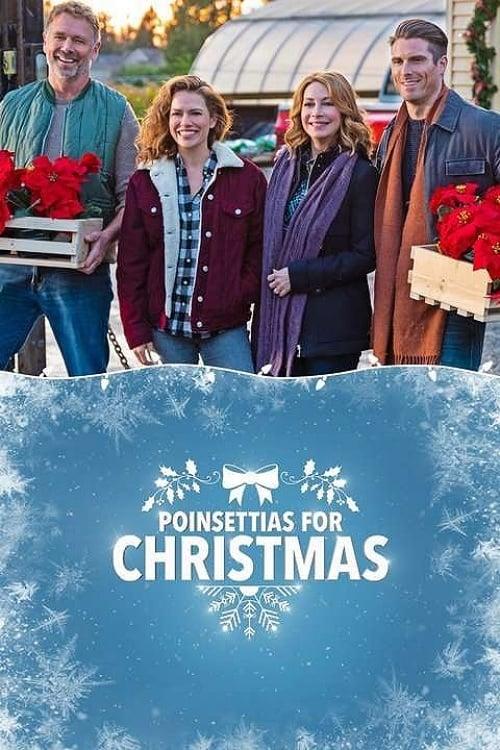 FILM Poinsettias for Christmas 2018 Film Online Subtitrat in Romana – 67Lavoie182